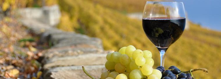 Pasadena Wine Tour Limo Service